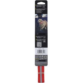 Nite Ize Nite Dawg LED Dog Collar Large Red